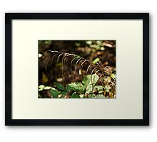 A Speck In God's Eye Yet Precious In His Sight Framed Print