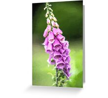 Purple Perfection  (EH2) Greeting Card