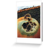 Rotting Halloween Pumpkin Greeting Card
