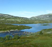 River bed Norway by SoulSparrow