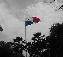 Panama Flag selective color by JuanEstebanV