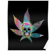 Painted Skull & Leaf Poster