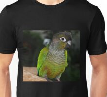 Fabulous Feathers Unisex T-Shirt