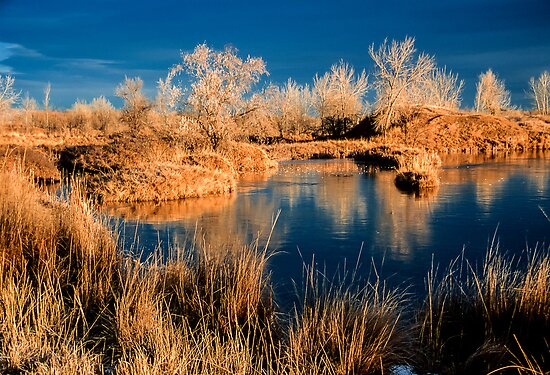 Golden Sawhill Ponds Morning by Greg Summers