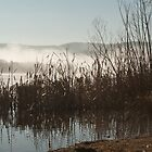 Lake Wallace, Wallerawang NSW Australi by Deborah McGrath