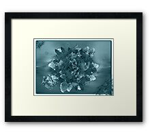 ©DA Mini Alien World IIA Monochromatic Framed Print