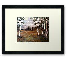 """Rocky Mountain Meadow"" Framed Print"