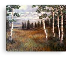 """Rocky Mountain Meadow"" Canvas Print"