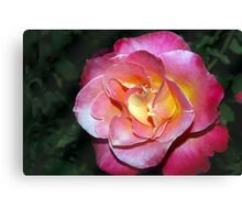 In your face beauty Canvas Print