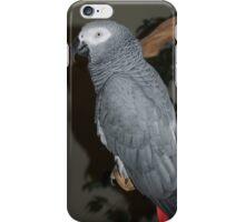 African Grey iPhone Case/Skin