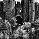 Cardiff Castle by newbeltane