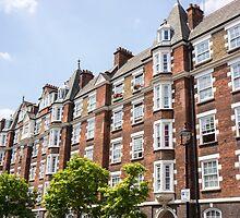 a row of brick homes  by Anne Scantlebury