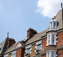 rooftops by Anne Scantlebury