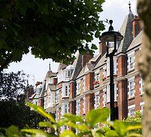 homes in park road by Anne Scantlebury