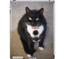 Black and White House Cat iPad Case/Skin