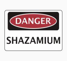 DANGER SHAZAMIUM FAKE ELEMENT FUNNY SAFETY SIGN SIGNAGE Baby Tee