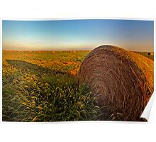 Hay in the Field Poster