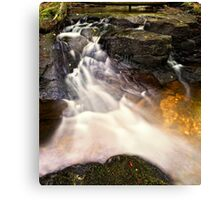 Stream Appeal Canvas Print