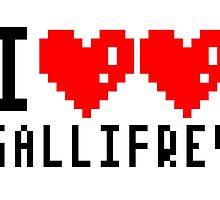 I Love Gallifrey by pardock