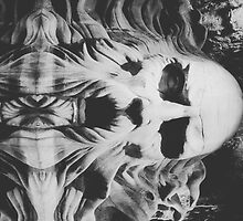 Chamber of Secrets by beatrizfilipe