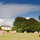 irish countryside rural nature farm hay scenic landscape nature by Noel Moore Up The Banner Photography