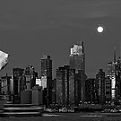 new york cityscape skyline landmark hudson river statue liberty by Noel Moore Up The Banner Photography