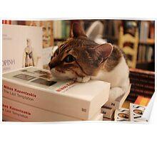 Cat in Literature! Poster