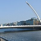 Samuel Beckett Bridge Cityscape Skyline Dublin Ireland by Noel Moore Up The Banner Photography