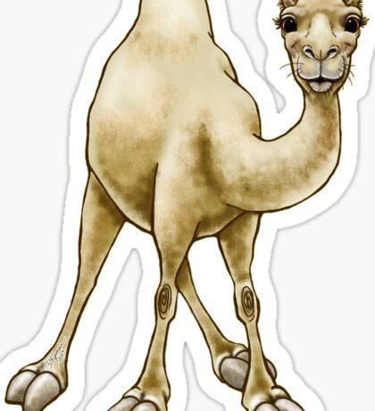 Hump Day Camel Sticker