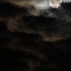 Vampire Moon by Theresa Selley