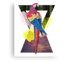 Red Macaw Triangles Canvas Print