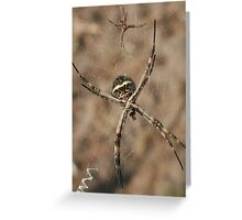 Pair of Spiders on a Web Greeting Card
