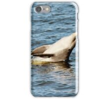 Dolphin Clapping  iPhone Case/Skin