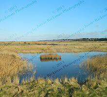 Lone Island - Blakeney to Cley Walk  by jamierickman