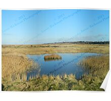 Lone Island - Blakeney to Cley Walk  Poster