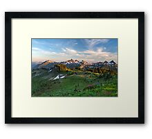 Tatoosh Range Wildflowers from Mazama Ridge Framed Print