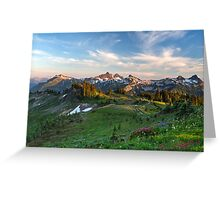 Tatoosh Range Wildflowers from Mazama Ridge Greeting Card