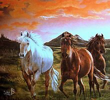 Way Out West by Susan Bergstrom