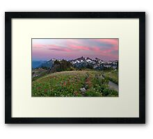Mazama Ridge Wildflowers Framed Print