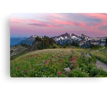 Mazama Ridge Wildflowers Canvas Print