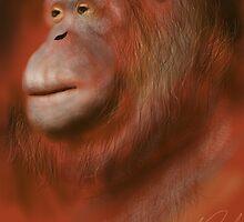 Portrait of an Orangutan by Ray Cassel