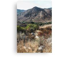California Landscape Canvas Print