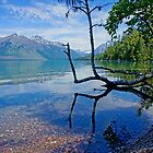 Lake McDonald by Harry Oldmeadow