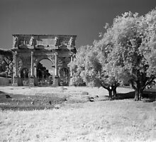 Arch of Constantine, Rome by Rodney Johnson