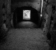 Interior, Colosseum, Rome by Rodney Johnson