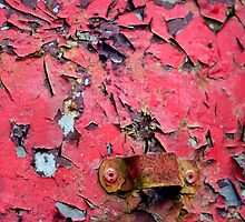 Paint Flakes and Rust by Bami