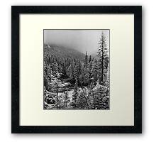 McDonald Falls, Glacier N.P. Framed Print