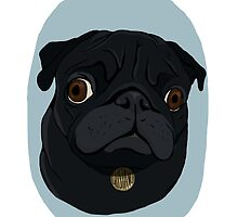 Gustavo the Pug by kelsowe