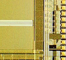 Gold Microchip by TelestaiPix