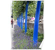 blue trunks Poster
